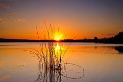 померанцовый заход солнца Стоковое фото RF