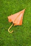 Померанцовый зонтик Стоковые Фото