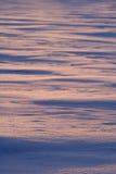 померанцовый снежок Стоковые Изображения
