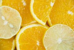 померанцы лимонов Стоковые Фото