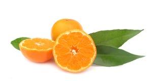 Померанцы мандарина Clementines совершенные Стоковые Фото