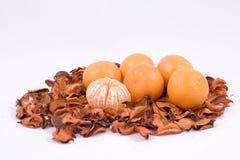 померанцы мандарина Стоковая Фотография