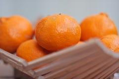 померанцы мандарина Стоковое Фото