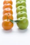 померанцы clementine стоковые изображения