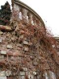 поместье старое Стоковое Изображение