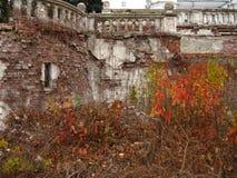 поместье старое Стоковое Фото