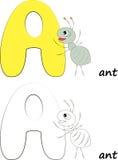 Пометьте буквами a, иллюстрацию муравья стоковое изображение