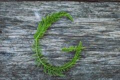 Пометьте буквами g от листьев на деревянной поверхности Стоковое Фото