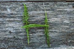Пометьте буквами h от листьев на деревянной поверхности Стоковое фото RF