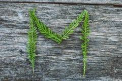 Пометьте буквами m от листьев на деревянной поверхности Стоковая Фотография