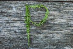 Пометьте буквами p от листьев на деревянной поверхности Стоковые Изображения
