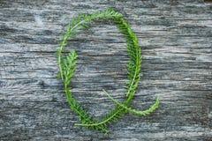 Пометьте буквами q от листьев на деревянной поверхности Стоковые Изображения RF
