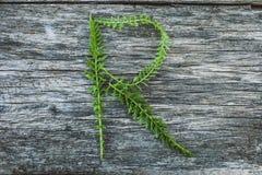 Пометьте буквами r от листьев на деревянной поверхности Стоковые Фотографии RF
