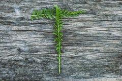 Пометьте буквами t от листьев на деревянной поверхности Стоковое Фото