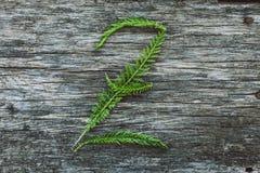 Пометьте буквами z от листьев на деревянной поверхности Стоковое фото RF