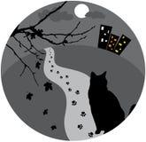 помехи кота Стоковое Изображение