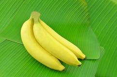 Помещают банан на зеленых лист банана Стоковое Фото