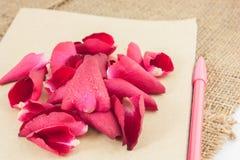 Помещают красные розы на старой книге и ручке Стоковое Изображение RF