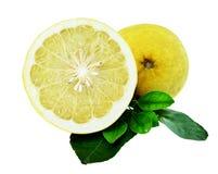 Помело или желтый грейпфрут изолированные на белизне Стоковое фото RF