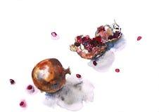 помогает pomegranate здоровья иллюстрация вектора
