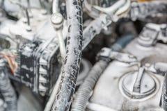 Помойте двигатель с пеной Двигатель в пене для мыть автомобиль Шланги в пене Стоковое Изображение RF
