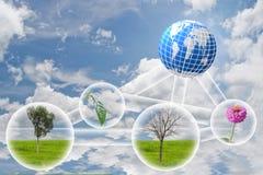 Помощь природы мир. Стоковые Изображения