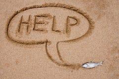 помощь рыб Стоковые Фото