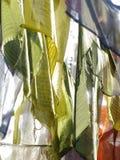 Помолите флаги Стоковое Изображение RF