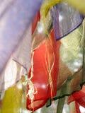 Помолите флаги Стоковая Фотография RF