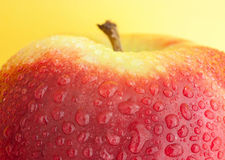 Помытое яблоко Стоковое Изображение RF