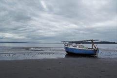Помыто ashore Стоковая Фотография RF