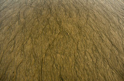 Помытый песок воды Стоковые Фото