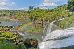 понижается iguacu Стоковая Фотография RF