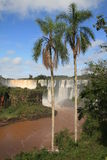 понижается iguazu Стоковое Изображение