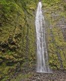 понижается waimoku Гавайских островов maui Стоковые Изображения RF
