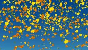 Понижаясь замедление листьев осени акции видеоматериалы