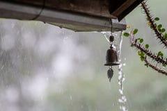 Понижаясь падения трудного колокола дождя и ветра на предпосылке Стоковое фото RF