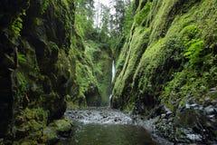 Понизьте падения в ущелье Oneonta Gorge Рекы Колумбия Стоковое фото RF