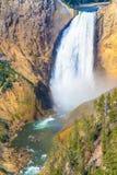 Понизьте падения гранд-каньона национального парка Йеллоустона Стоковое Изображение RF