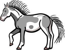 Пони пегой лошади бесплатная иллюстрация
