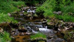 Пообещанное река водопада видеоматериал