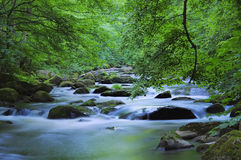 Пообещанное река Стоковые Фотографии RF