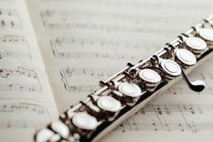 Поперечная каннелюра на листе музыки Стоковые Фотографии RF