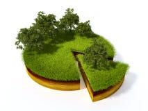 Поперечное сечение земли с травой Стоковое фото RF