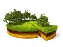 Поперечное сечение земли с травой Стоковые Фотографии RF