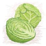 Поперечное сечение капусты Стоковые Фото