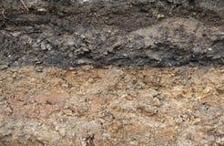 Поперечное сечение подземных слоев почвы стоковые изображения rf