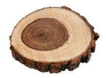 Поперечное сечение ствола дерева плача вербы изолированного на белой предпосылке Стоковые Изображения RF