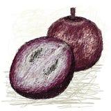 Поперечное сечение яблока звезды Стоковое фото RF