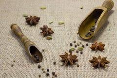 Поперчите в 2 деревянных ложках, кардамоне анисовки звезды на таблице Стоковое фото RF